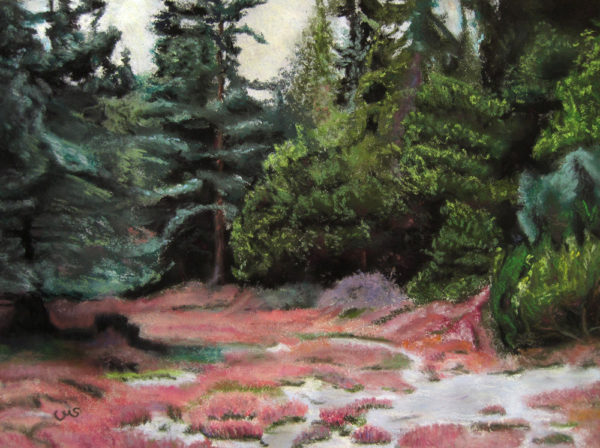 Heather with Pines
